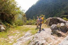 朋友背包徒步旅行者摆在密林机体后缘, Boliv的人游人 库存图片