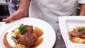 服务两个菜盘的厨师 股票录像