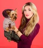 服装和辅助部件 哪些狗品种应该穿外套 在外套的女孩拥抱小犬座 妇女运载约克夏狗 库存图片