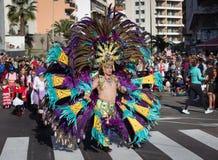 服装的人庆祝狂欢节,圣克鲁斯,特内里费岛的 库存照片