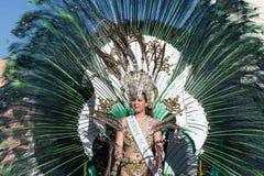 服装的在狂欢节,特内里费岛妇女 库存图片