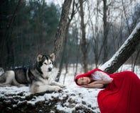 服装的女孩有狗爱斯基摩狗的小红骑兜帽喜欢a 免版税库存照片