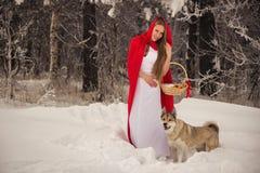 服装的女孩有狗的小红骑兜帽喜欢狼 免版税库存照片