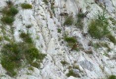 晴朗巨大的石灰石峭壁的纹理 免版税库存照片