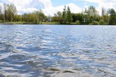 晴朗日的湖 免版税图库摄影