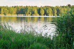晴朗横向的夏天 库存照片