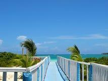 晴朗海滩的日 免版税库存照片