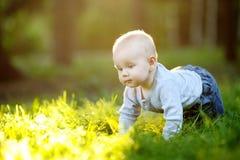 晴朗的公园的婴孩 免版税库存照片