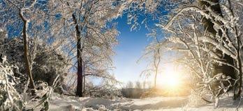晴朗的冬天妙境 库存照片