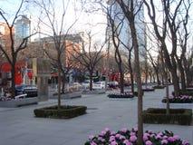 晴朗的冬日在北京 库存图片