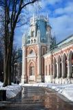 晴朗的冬日在Tsaritsyno公园在莫斯科 大宫殿 免版税库存图片