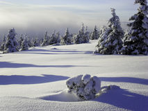 晴朗的天气在冰土地  免版税库存照片