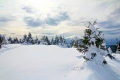 晴朗的天气 免版税库存图片