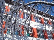 晴朗的学校门面和多雪的树枝 库存照片