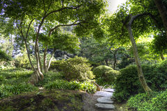 晴朗的日本庭院在夏天 图库摄影