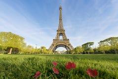 晴朗的早晨和艾菲尔铁塔,巴黎,法国 免版税库存照片