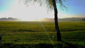 晴朗的早晨风景 免版税库存图片