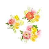 晴朗的春天花束上升了,毛茛属,水仙,牡丹 皇族释放例证