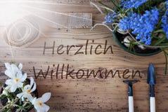 晴朗的春天花, Herzlich Willkommen手段欢迎 库存图片