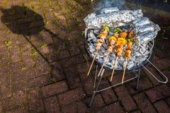晴朗的春日烤肉 图库摄影