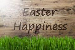 晴朗的木背景, Gras,文本复活节幸福 库存图片