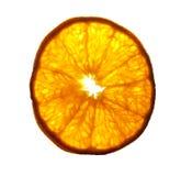 晴朗的橙色切片 库存图片