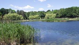 晴朗的湖 库存图片