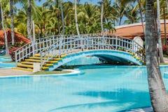 晴朗的热带庭院背景迷人的美丽的景色  图库摄影
