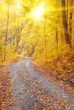 晴朗的秋天 库存图片
