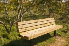 晴朗的长凳秋天领域 免版税库存图片