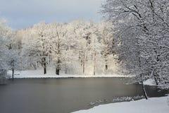 晴朗的风景冬天早晨在公园 免版税图库摄影
