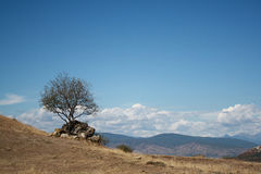 晴朗的风景山乔治亚Jvari 免版税库存照片