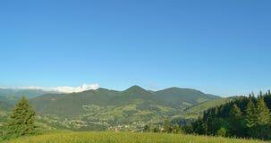 晴朗的绿色山 蓝天和小山草甸 摇摄 山的森林 在的全景美丽的杉树 股票录像