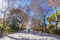 朗达,马拉加,西班牙公园  免版税库存图片