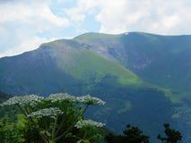 晴朗高加索日dombay山的sofrudzhu 库存照片
