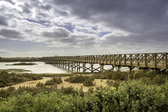 朝向到金塔的人行桥在Ria福摩萨做Lago海滩, 阿尔加威 免版税库存照片