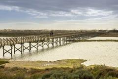 朝向到金塔的人行桥在Ria福摩萨做Lago海滩, 阿尔加威 库存图片