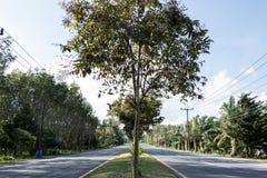 朝向对省的四车道的路 免版税库存照片