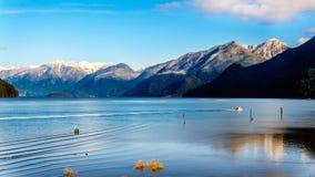朝向有金黄耳朵、兴奋峰顶和其他峰顶的峰顶的Pitt湖的渔船在海岸山 免版税库存图片
