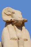 朝向的公羊狮身人面象 图库摄影