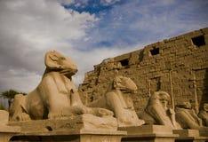 朝向的karnak公羊雕刻狮身人面象石头 免版税库存照片