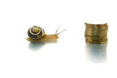 朝向蜗牛的硬币 库存图片