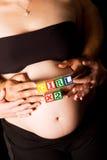 期待女孩怀孕的孪生的夫妇 免版税库存照片