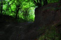朦胧的道路在有太阳的喀尔巴阡山脉绿色森林里在深 图库摄影