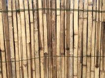 木为背景 库存图片