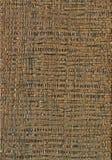 木五谷纹理,非洲金合欢木头 木头,木五谷裁减的纹理 图库摄影