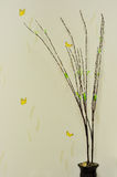 木五谷蝴蝶图片和四背景白色树 库存图片