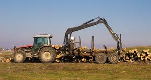 木产业装货和运输树干 库存图片