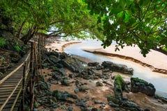 木供徒步旅行的小道在泰国密林 免版税库存图片