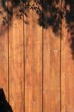 木保密性篱芭 免版税库存照片
